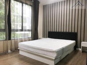For SaleCondoNakhon Pathom, Phutthamonthon, Salaya : Sell/Rent Icon Do Salaya 2, The Campus, Building B, 2nd Floor, Pool View