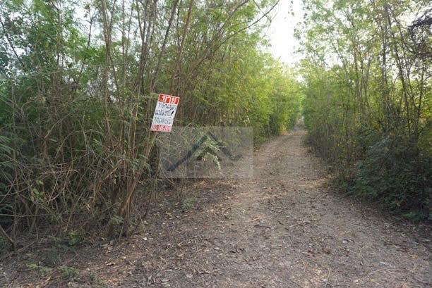 ขายที่ดินอยุธยา : ขาย ที่ดินเปล่าจัดสรร ในอำเภอภาชี (ใกล้อนามัยโคกม่วง)