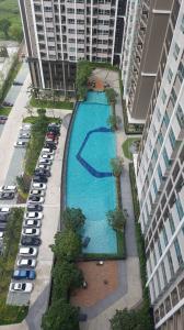 For SaleCondoRama9, RCA, Petchaburi : Condo for sale Supalai Veranda Rama 9 (Condo Supalai Veranda Rama 9) # Pool view