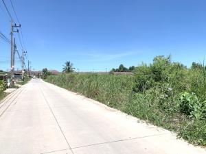 For RentLandPattaya, Bangsaen, Chonburi : Land for rent, Sriracha, Chonburi, area 39 rai.