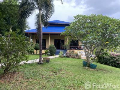 ขายบ้านภูเก็ต ป่าตอง : ขาย บ้านเดี่ยว 4 ห้องนอน ในโครงการ ในหานบ้านบัว U1003768