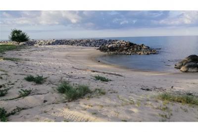 For SaleLandNakhon Si Thammarat : Beachfront land for sale in Sao Phao, Nakhon Si Thamarat