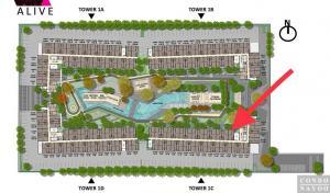 For RentCondoRangsit, Patumtani : For rent plum condo rangsit alive1 building c 1st floor
