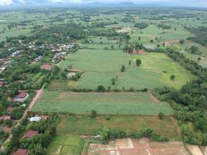 ขายที่ดินขอนแก่น : ที่ดินเปล่า ไร่อ้อย อ. ชุมแพ ต. หนองเขียด บ้านหนองหว้า 5-1-62.2ไร่ ขายรวมยกแปลง750,000 รวมค่าโอน