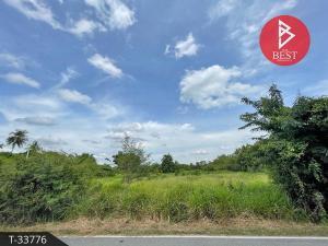 For SaleLandSing Buri : Land for sale, area 5 rai 31.0 square wa, Tha Chang, Sing Buri.
