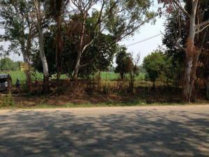 For SaleLandPhetchabun : Land for sale on Phetchabun - Si Thep road, area of 5 rai, 3 ngan.