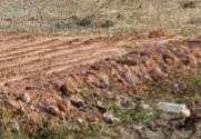 ขายที่ดินลาดกระบัง สุวรรณภูมิ : ขายที่ดินถมดินแล้ว 1ไร่ แปลงสี่เหลี่ยมสวยหน้ากว้างติดถนน พื้นที่สีเหลือง  เข้าจากถนนใหญ่นิดเดียว เหมาะลงทุนทุกประเภท