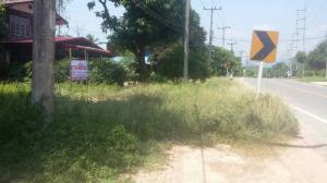 For SaleLandPhitsanulok : Land for sale next to the national highway. Nakhon Thai-Dan Sai (2013)