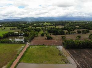 For SaleLandNakhon Nayok : Land for sale, Ban Na District, Nakhon Nayok Province, beautiful mountain view, near Bangkok, last 5 plots, economical price