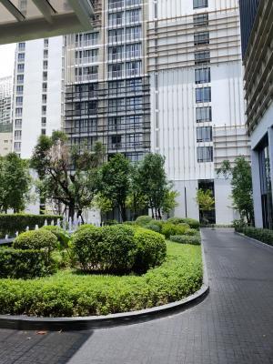 For RentCondoSukhumvit, Asoke, Thonglor : Urgent Rent ++ High Floor ++ Good Decor ++ Park 24 ++ BTS ++ Available @ 15000 🔥