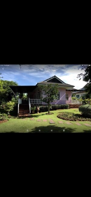 For SaleHouseKorat KhaoYai Pak Chong : Urgent sale!!! Single-storey house 🏠 near the city of Pak Chong - Khao Yai ☎️080-9616366