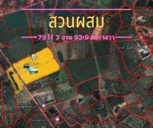 For SaleLandChanthaburi : Land for sale, large pool suitable for resort water system throughout Big plot of land for sale, prime location, 79 rai 3 ngan 93.9 sq.wa. 79 rai 3 ngan 93.9 sq.wa.