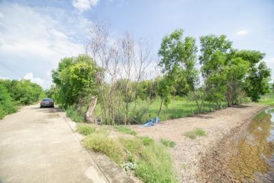 For SaleLandAyutthaya : Land for sale, beautiful plot, next to concrete road, Wang Chula, Wang Noi, Ayutthaya
