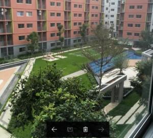 For RentCondoRangsit, Patumtani : (++Rent++) Plum Condo, Phase 3, Building D, 6th floor, pool view, price 7000 baht per month.