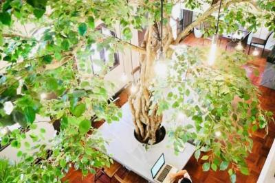 For RentRetailSukhumvit, Asoke, Thonglor : Baan Suan Restaurant & Cafe Thonglor