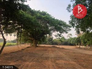 For SaleLandAng Thong : Land for sale, area 3 rai 3 ngan 73 square wa, Chaiyo, Ang Thong.