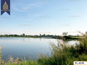 For SaleLandChachoengsao : Quick sale, fish pond land, green area, Kon Kaew, Chachoengsao.