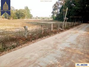 ขายที่ดินอุบลราชธานี : ที่ดิน ติดถนนคอนกรีตบ้านยางเทิง ไร่น้อย อุบลราชธานี