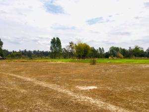 For SaleLandUbon Ratchathani : Land for sale 16 rai, Don Chik Subdistrict, Phibun Mangsahan District. Ubon Ratchathani Province