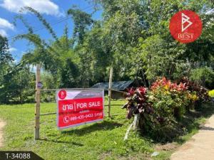 For SaleLandChiang Mai : Beautiful land for sale 6 rai 2 ngan 18 square wa in Mae Taeng, Chiang Mai.