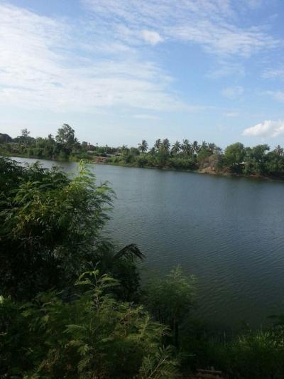 ขายที่ดินนครปฐม พุทธมณฑล ศาลายา : SALE : LAND in NAKORNPATHOM 4-0-47 RAI