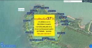 For SaleLandTrat : Land for sale, area 37 rai, Bang Pid Subdistrict, Laem Ngop District, Trat Province.