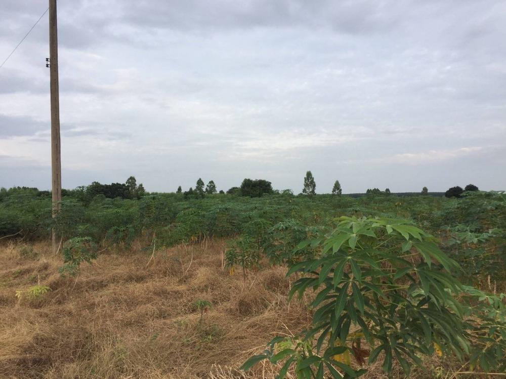 For SaleLandChachoengsao : SALE : LAND in CHACHOENGSAO 18 RAI