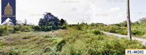 For SaleLandChiang Mai : Land allocated, reclamation, Doi Saket, Chiang Mai