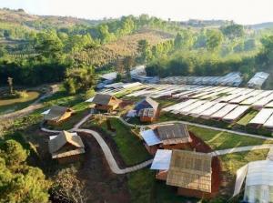 ขายขายเซ้งกิจการ (โรงแรม หอพัก อพาร์ตเมนต์)เพชรบูรณ์ : ขายฟาร์ม home-stay resort พร้อมสิ่งปลูกสร้าง ทุ่งสมอ เขาค้อ ที่ดินโฉนดถูกต้อง 27 ไร่ 70 ตรว. (4 แปลง)