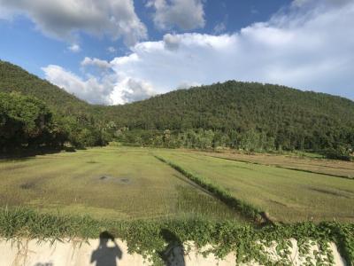 ขายที่ดินลำพูน : AE64180 ขายที่ดิน หน้าติดน้ำ หลังติดเขา บ้านธิ ลำพูน ติดเขตออนใต้ สันกำแพง เนื้อที่ 5 ไร่