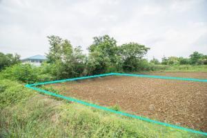 ขายที่ดินฉะเชิงเทรา : ขาย ที่ดิน แปลงสวย ติดถนนทางเข้าใกล้ ฉะเชิงเทรา-กบินทร์บุรี(304) พนมสารคาม ฉะเชิงเทรา