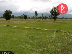 For SaleLandNakhon Sawan : Land for sale, area of 30 rai, Paisali, Nakhon Sawan, cheap price.