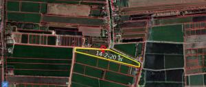 ขายที่ดินบางใหญ่ บางบัวทอง ไทรน้อย : ขายที่ดิน ไทรน้อย 14-2-20ไร่ หน้ากว้าง 275 ม. ใกล้ ถนนบางบัวทอง-สุพรรณฯ
