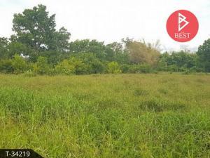 ขายที่ดินจันทบุรี : ขายที่ดินเปล่า ติดคลอง 6 ไร่ 3 งาน 26 ตารางวา อ.มะขาม จ.จันทบุรี