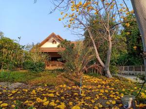 ขายบ้านมุกดาหาร : ขายบ้านสวนสไตล์คันทรี่ ร่มรื่น สงบ ในอำเภอนิคมคำสร้อย จังหวัดมุกดาหาร