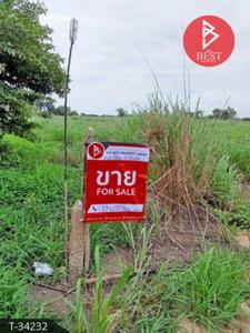 ขายที่ดินอุทัยธานี : ขายที่ดินเปล่า เนื้อที่ 13 ไร่ 2 งาน 36 ตารางวา เนินแจง อุทัยธานี
