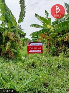 ขายที่ดินอุทัยธานี : ขายที่ดินเปล่า เนื้อที่ 2 ไร่ 2 งาน 31 ตารางวา เกาะเทโพ อุทัยธานี