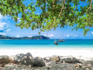 ขายที่ดินสมุย สุราษฎร์ธานี : ขายที่ดินติดทะเลเกาะพะงันหาดทรายขาว