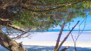 For SaleLandSamui, Surat Thani : Koh Phangan Beachfront land for sale