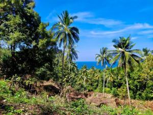 For SaleLandSamui, Surat Thani : Land for sale, sea view, west coast.