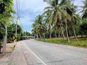 ขายที่ดินสมุย สุราษฎร์ธานี : ขายที่ดินติดถนนรอบเกาะราคาถูกมากๆ