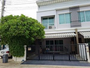 For SaleTownhousePinklao, Charansanitwong : ขาย พลีโน่ พระราม5-ปิ่นเกล้า แปลงมุม หน้าสวน บิ้วอินท์ทั้งหลัง