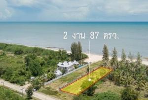 For SaleLandHua Hin, Prachuap Khiri Khan, Pran Buri : ขายที่ดิน 2 งาน 87 ตร.วา ติดชายหาด จ.ประจวบคีรีขันธ์ เหมาะทำบ้านพักตากอากาศ