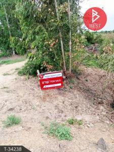 ขายที่ดินอุทัยธานี : ขายที่ดินเปล่า เนื้อที่ 20 ไร่ 2 งาน สะแกกรัง อุทัยธานี เหมาะทำการเกษตร