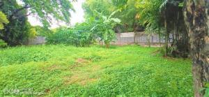 For SaleLandPattanakan, Srinakarin : ขายที่ดินเปล่า ถมแล้ว 200 วา ตั้งอยู่ในซอยพัฒนาการ 58
