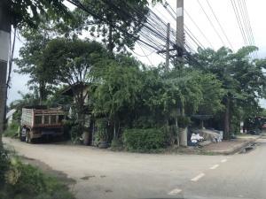 For SaleLandRangsit, Patumtani : ขายที่ดิน รังสิต-นครนายก คลอง 9 ขนาด 80 ตรว. ใกล้ปากซอย เพียง 65 เมตร