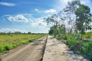 For SaleLandRangsit, Patumtani : ขาย ที่ดินเปล่าหนองเสือ ถนนเลียบคลอง11 (ถนน 3022) ที่ถมแล้วต.นพรัตน์ อ.หนองเสือ ปทุมธานี