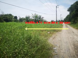 For SaleLandRangsit, Patumtani : Land for sale in Khlong 7 Thanyaburi, only 1.4 km from Rangsit-Nakhon Nayok Road, 4 rai, 12,800,000 baht.