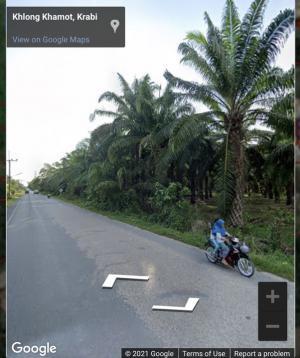 เช่าที่ดินกระบี่ : 🌳🌳ให้เช่า ที่ดินsาคาถูก สวยติดถนน ✨🌳4 ไร่ จ.กระบี่ ต.คลองเขม้า 📍✨🛥ใกล้ที่จอดเรือยอร์ช Krabi Boat Lagoon ❤️เช่า 4 ไร่ เพียง 12,000 บาท ถูกมาก ตกไร่ละ 3,000 บาท❤️