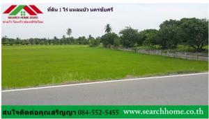 For SaleLandNakhon Pathom, Phutthamonthon, Salaya : ขายที่ดินเปล่า 400 ตรว.   ติดถนนลาดยาง เป็นที่นา สร้างบ้านได้ แหลมบัว นครชัยศรี นครปฐม โทร 084-5525455